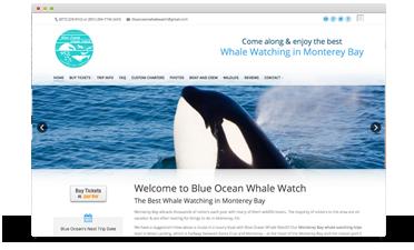 Blue ocean whale watch